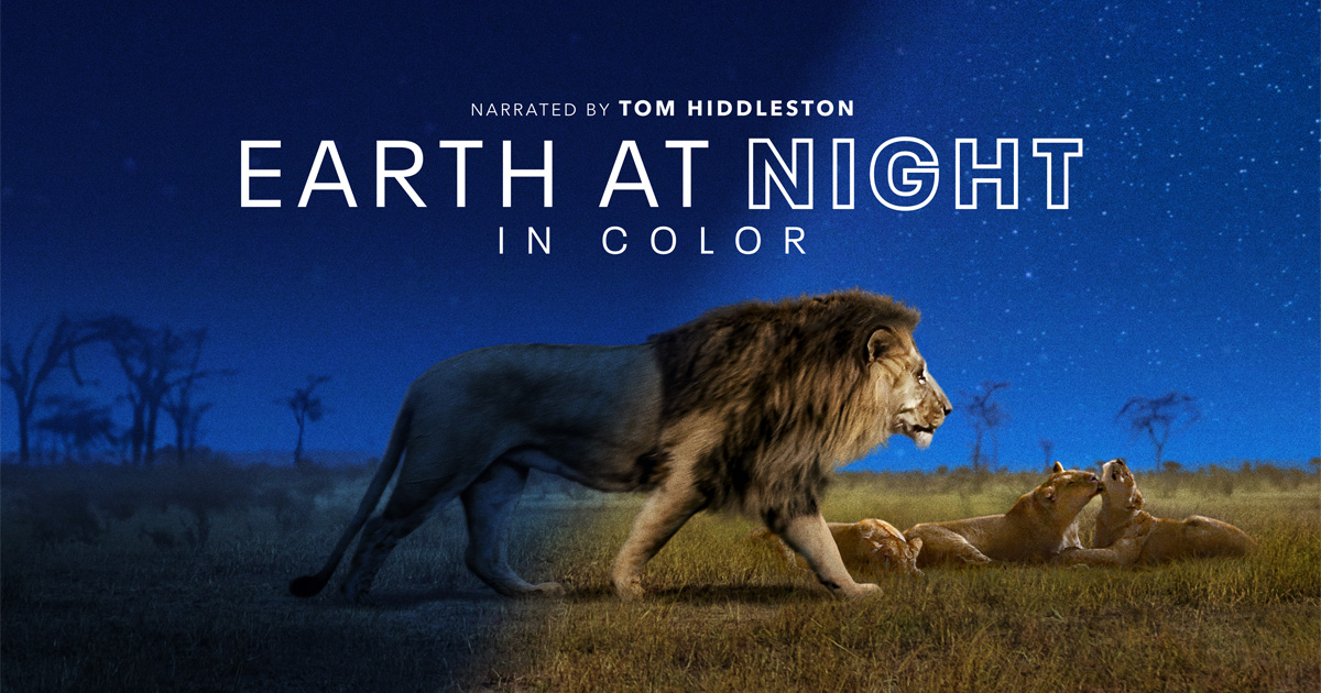 زمین در شب به صورت رنگی (مستند)